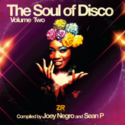 The Soul Of Disco Volume Two