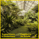 Tropical Drums Of Deutschland Compiled by Jan Schulte