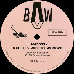 A Child's Guide To Groove