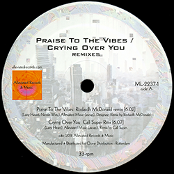 Praise to the Vibes / Crying Over You Remixes